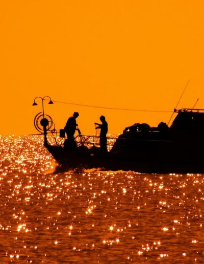 fishing-near-theolympialodge
