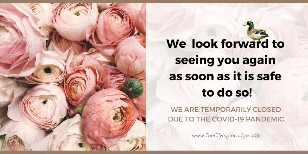 We are temporarily closed due to Covid. eNews recipients will be notified when we open. Please sign up below.