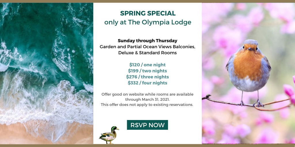 spring special - stay more and save more.